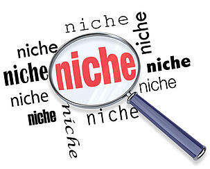 Define your niche