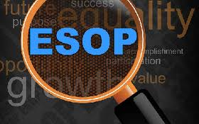 6 Reasons Business Owners Don't Do ESOP's