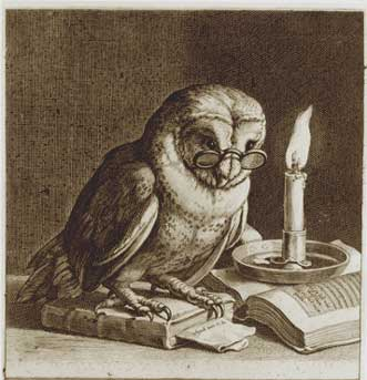 the wise owl1