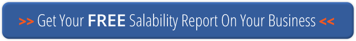 Salabiity Index Report