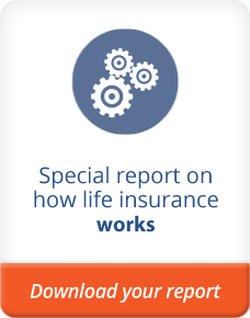 special report on the basics of life insurance